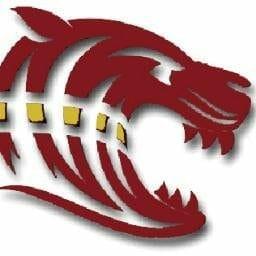CIPeuFGc 400x400 - Dawson County High School Class of 2020 Grad Night
